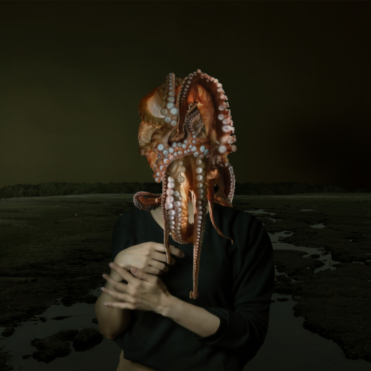 Portrait of an octopus woman 2